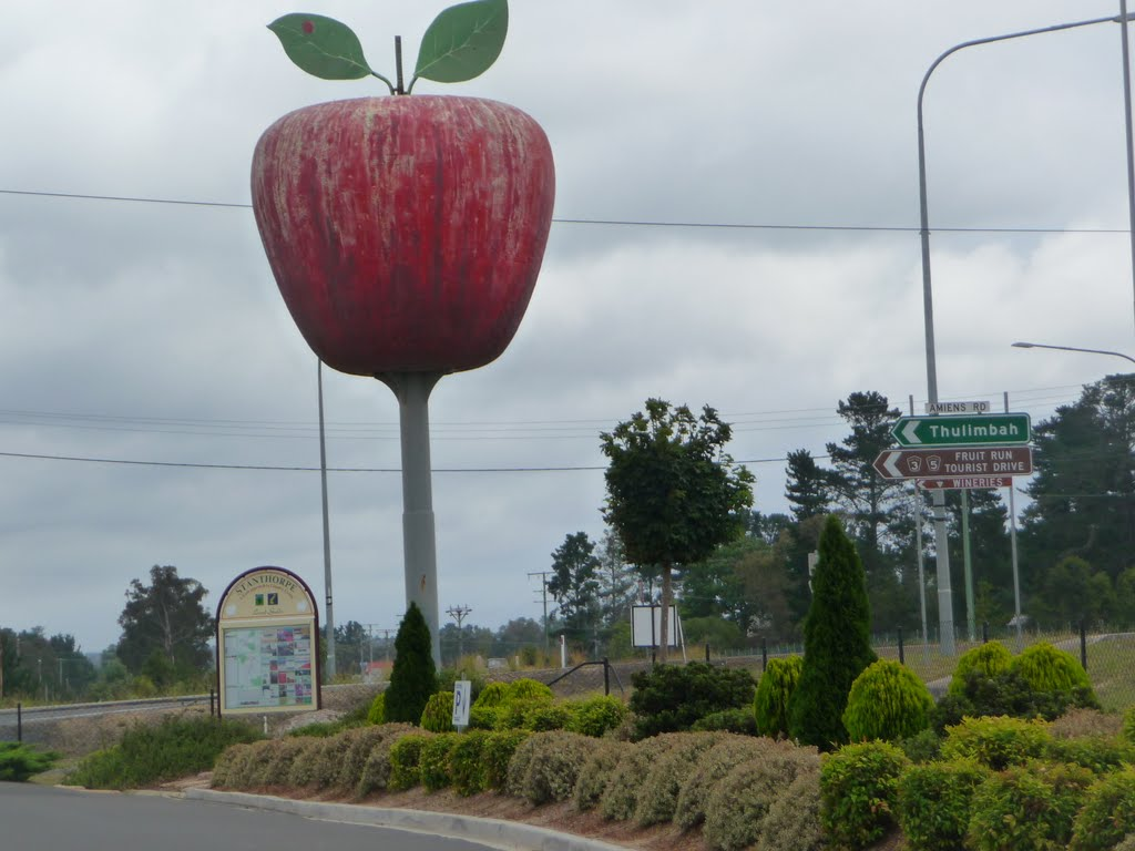 The big apple, Thulimbah, Queensland, Australia