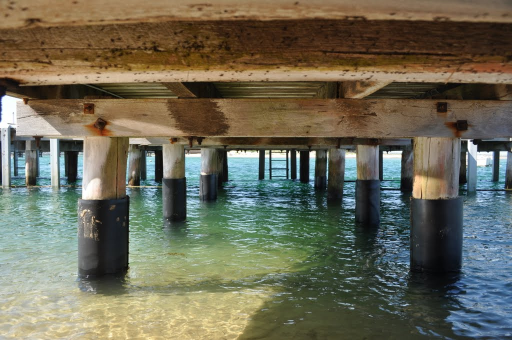 Underneath jetty, Barwon Heads