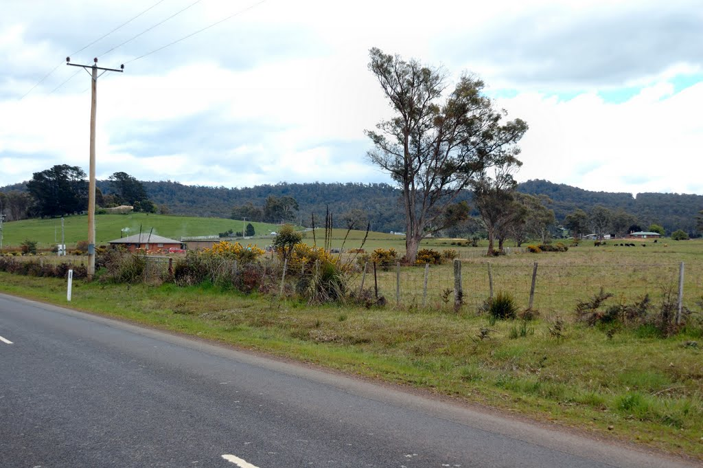 Countryside along Bridgenorth Road