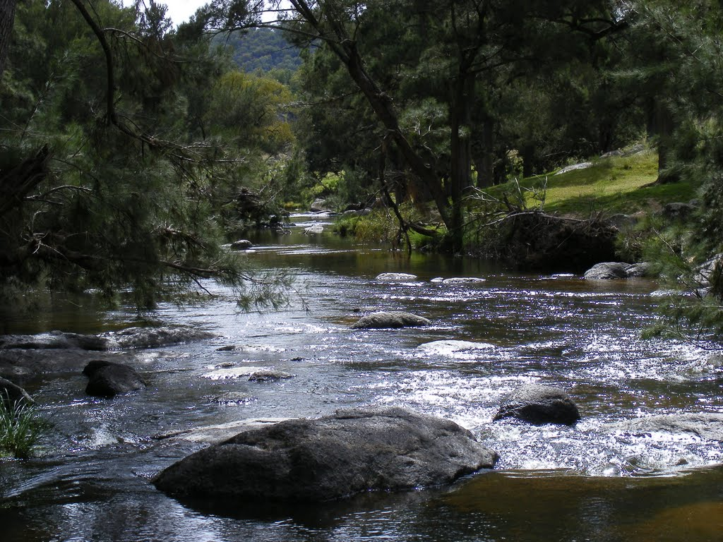 On the McDonald River 7km north of Bendemeer