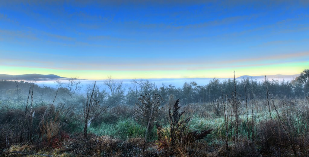 McMillans Lookout - Misty Morning