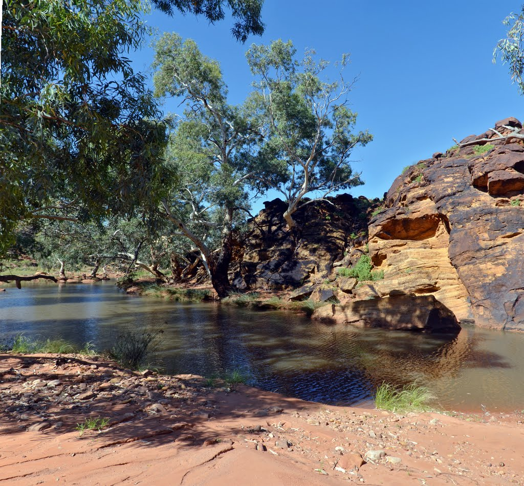 Waterhole, Fowlers Gap