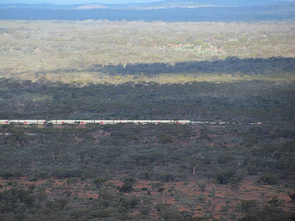 Indian Pacific railway train viewed from Mt Burges