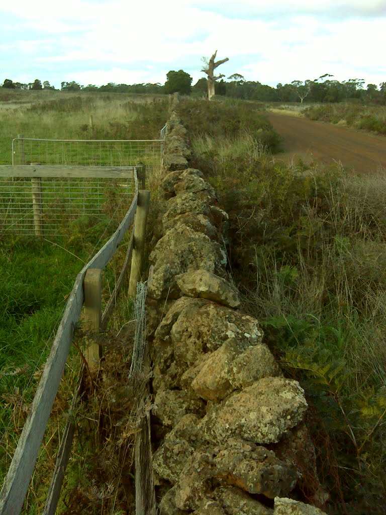 Dry Stone Fencing