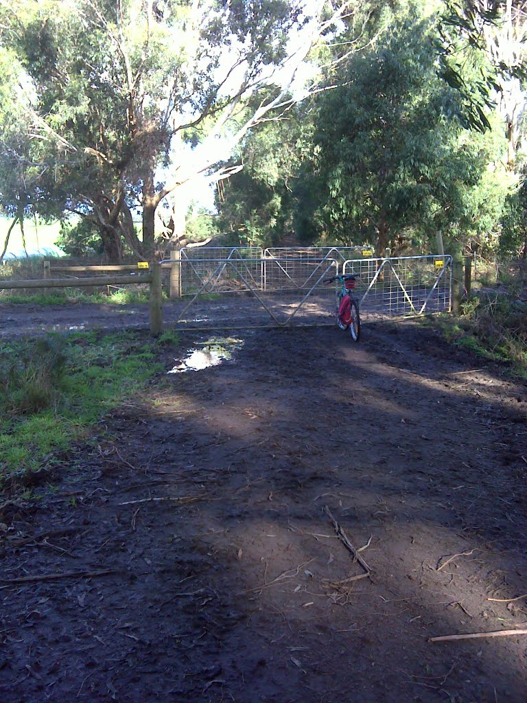Camperdown - Timboon rail trail