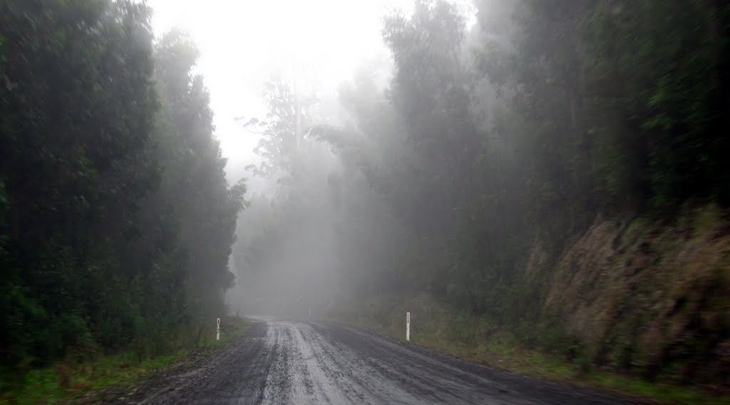 Road to Mt Baw Baw