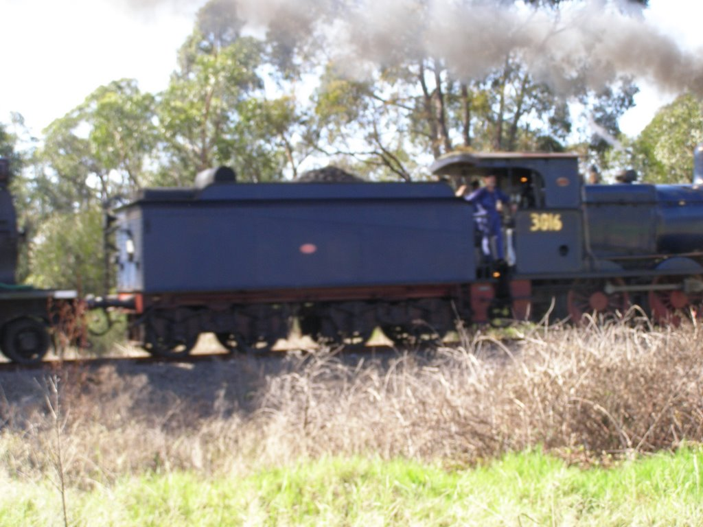 Train near Thirlmere-Picton