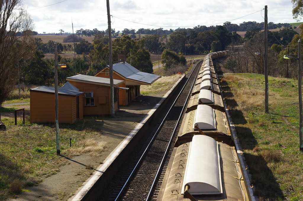 Grain Train, Wallendbeen Railway Station