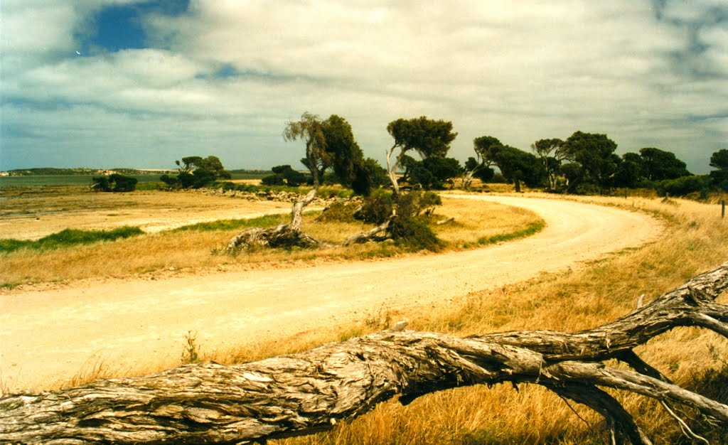 Road to The Coorong