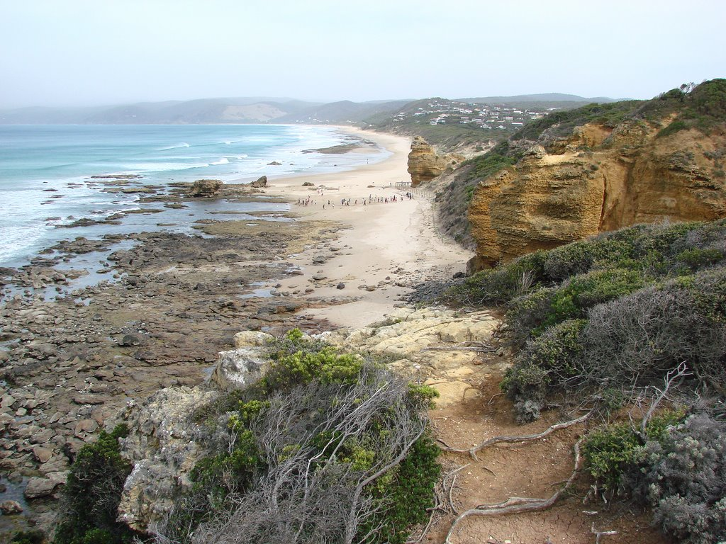 Beach from Great Ocean Road