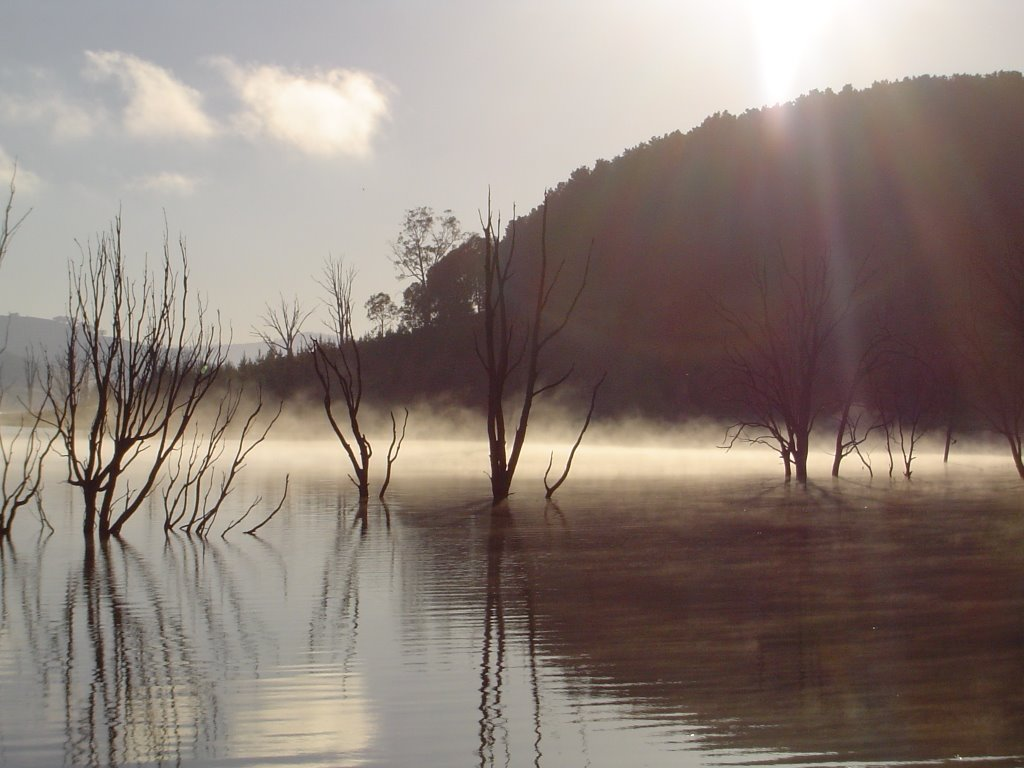 Eildon Sunrise