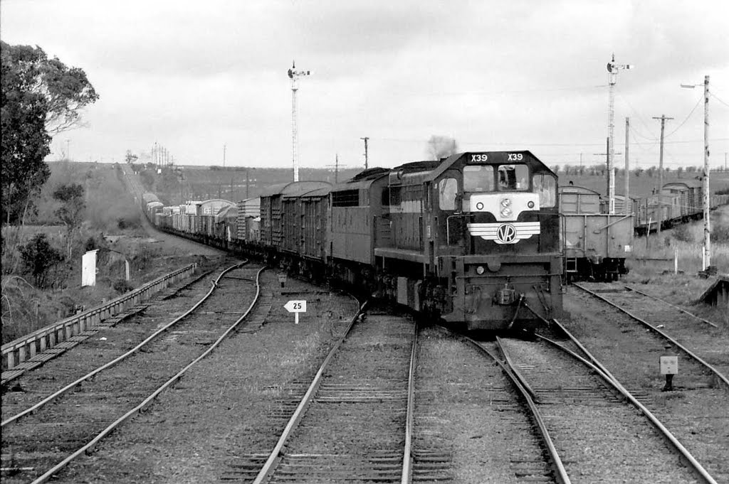 X39 brings the Sunday goods into Warrenheip mid 1974 and 36 years later just around the corner I shot another goods train http://www.youtube.com/watch?v=xaAhN7L40wY
