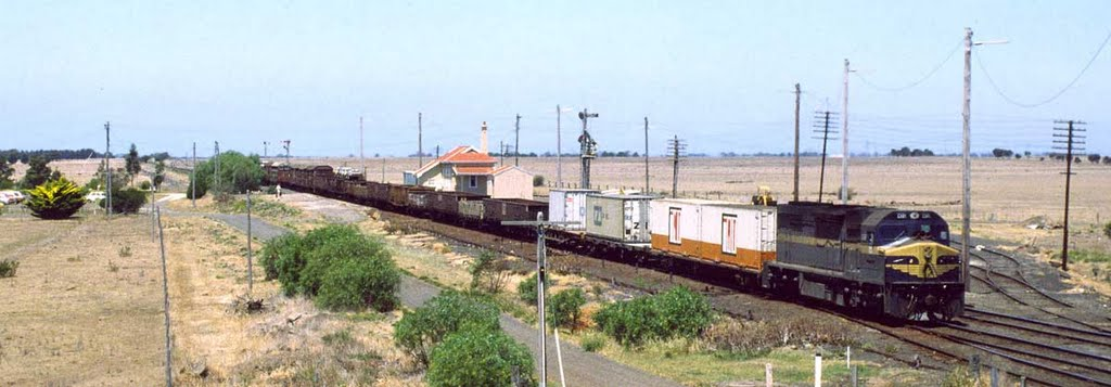 C501 passing Gheringhap on 11/12/82
