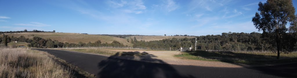 Panorama outside Vaughan vineyard [2011]