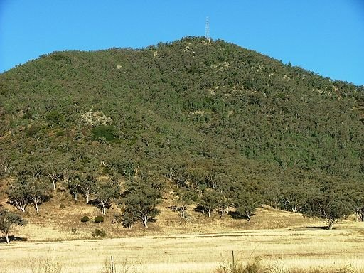 Mount Terrible (Warragundi), Currabubula NSW