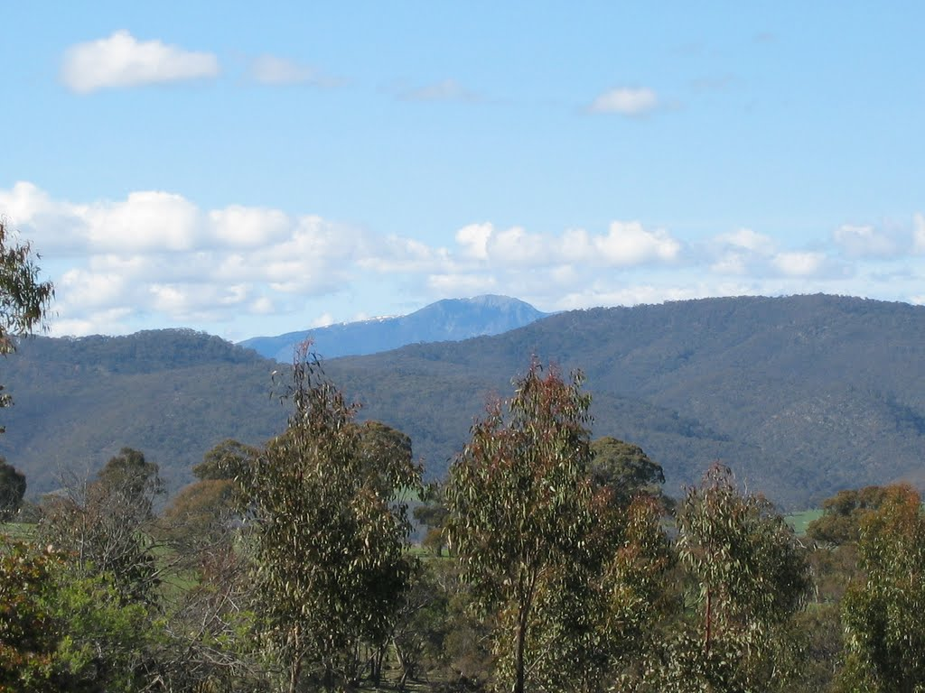Mount Buller from Adelberg, Barwite