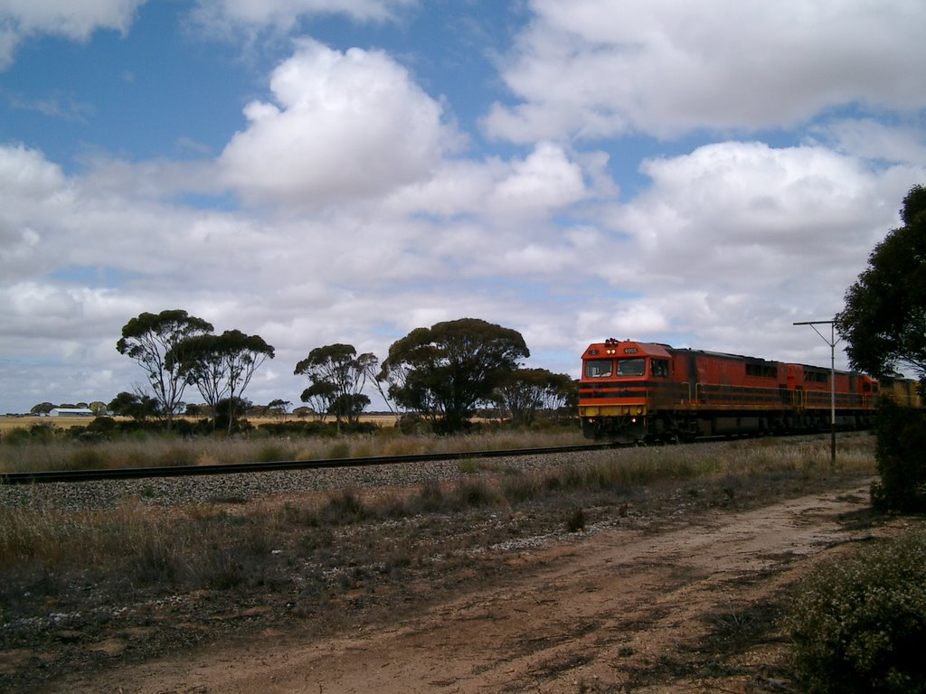 Train by the road to Norseman
