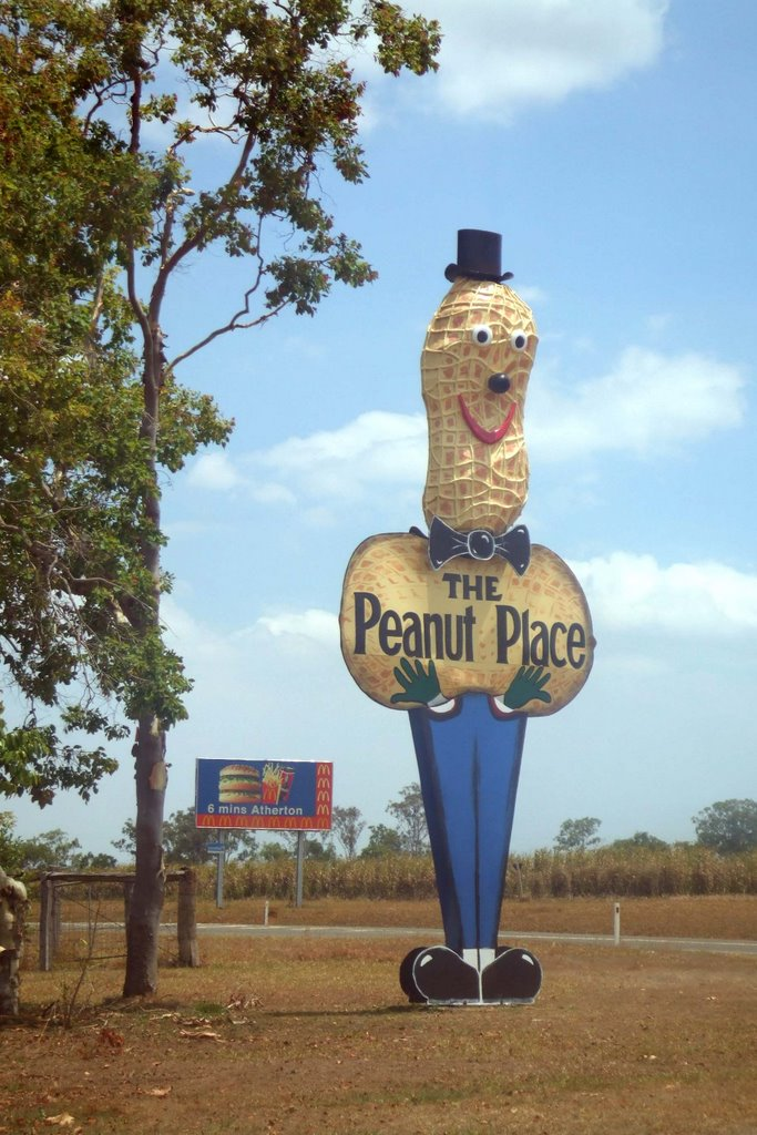 Peanut Man - North Queensland