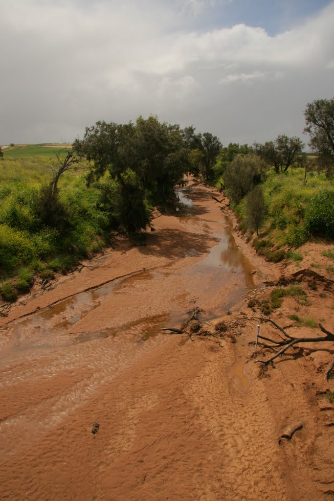 Irwin River upstream of Mingenew Mullewa road