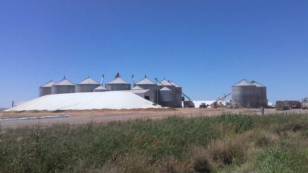Tatyoon North Grains Receival Station