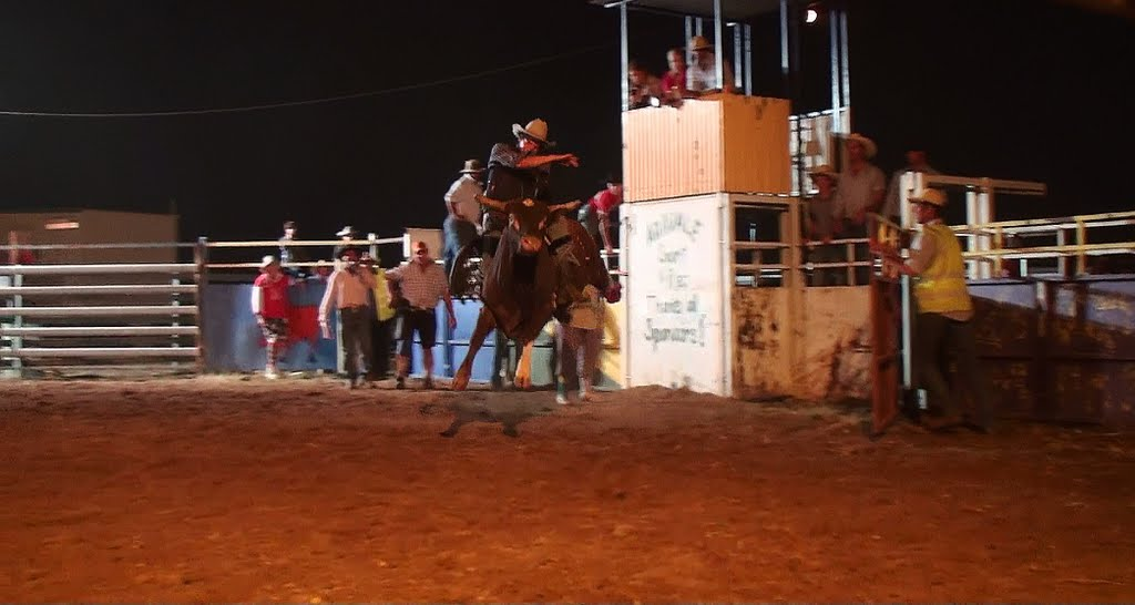 adavale rodeo & gymkhana2011(may day w/end every year)campdraught for 2012