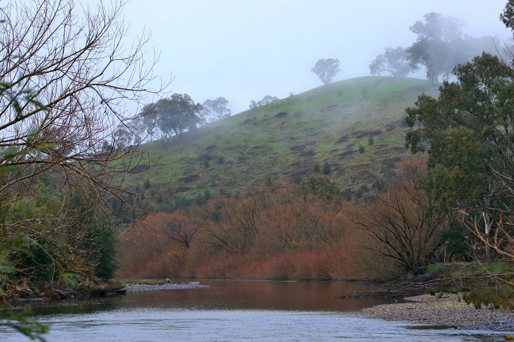 Goulburn River looking downstream