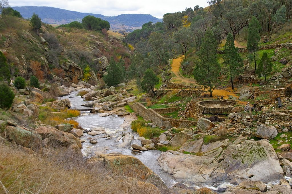 The old gold mine at Adelong Falls