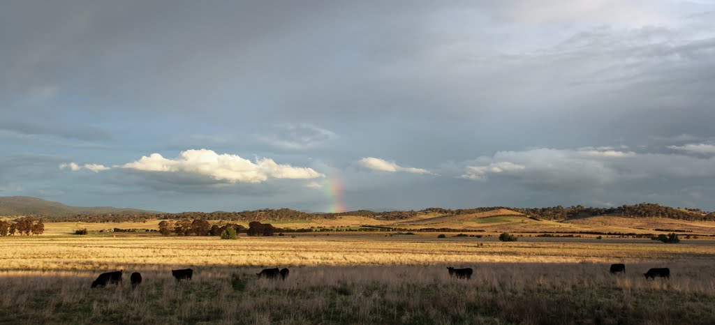 Distant rainbow on Carwoola
