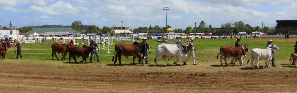 2011 North Coast National, Lismore Showgrounds.