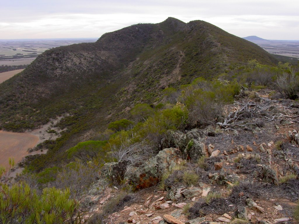 Looking north to the top of Darke Peak with Caralue Bluff on the far horizon