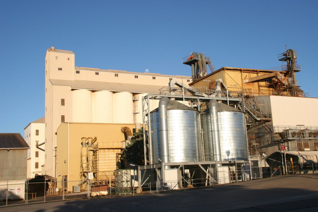 Peanut Country, Kingaroy, Queensland: The Peanut Silos