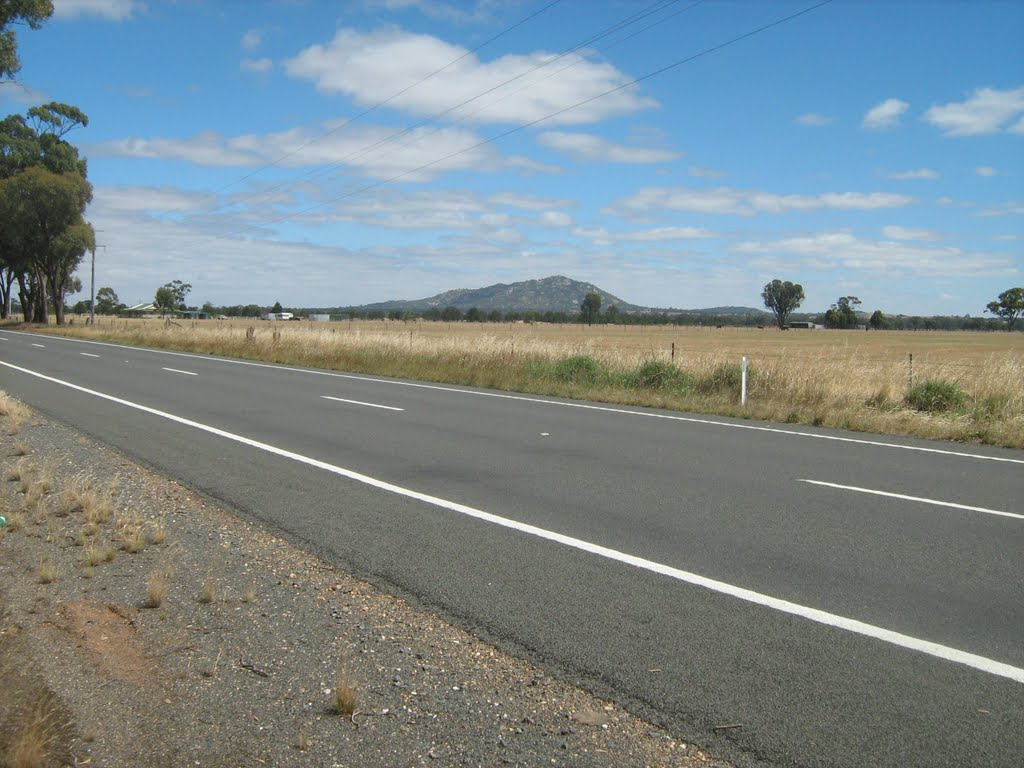 Mt Korong in distance from near Kurting, Vic