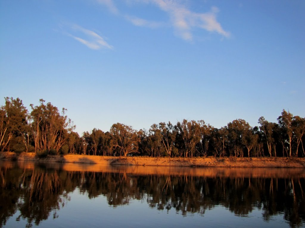 Lesley Johnston, final resting place. Murray River at Guilmartins Bend, Victoria