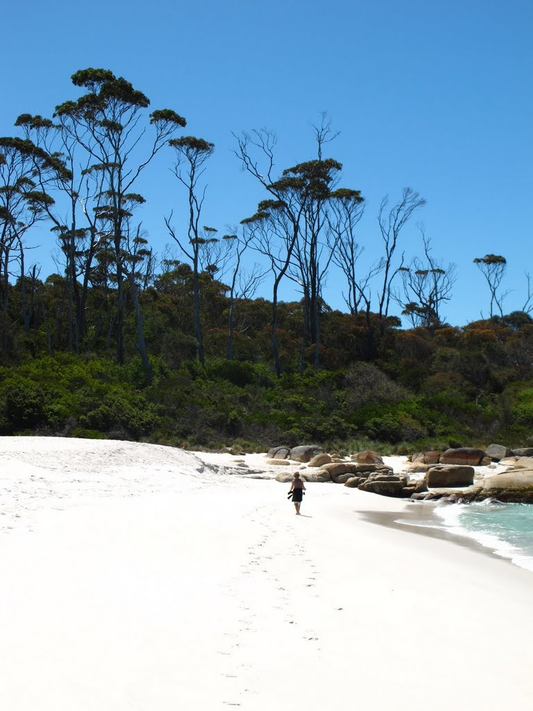 Tasmania, Bay of Fires,