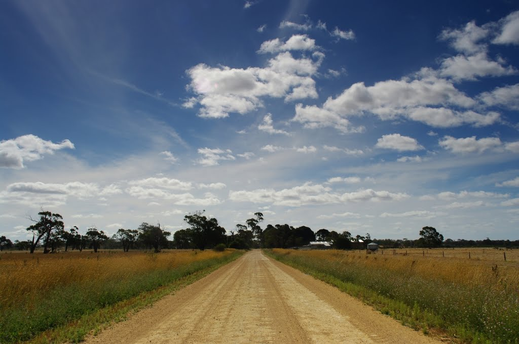 Conricks Road, Lucindale, 12 January 2012