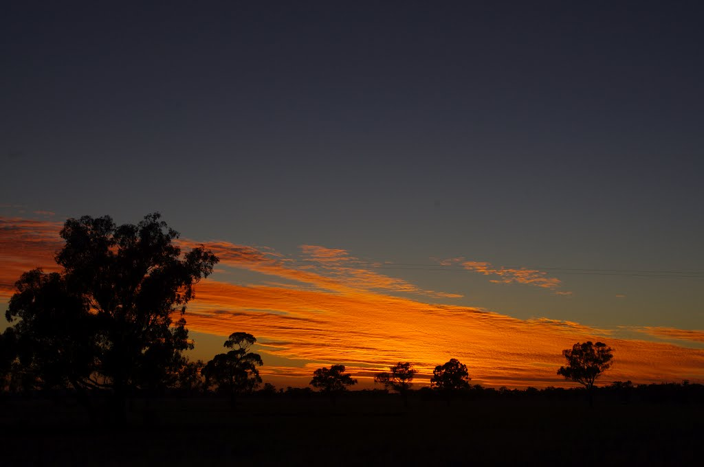 Fire in the Sky: Coolamon