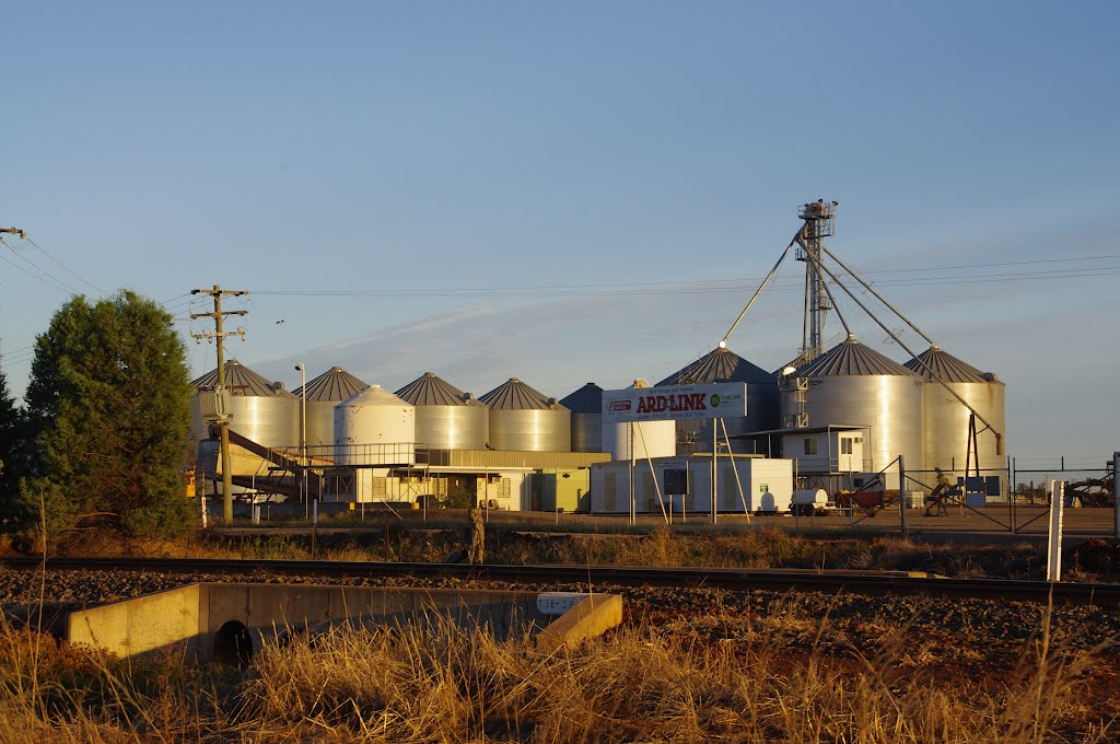 Silos come in different shapes and sizes: Ardlethan
