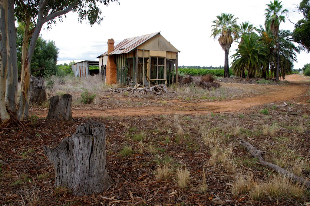 Seen Better Days: Yanco