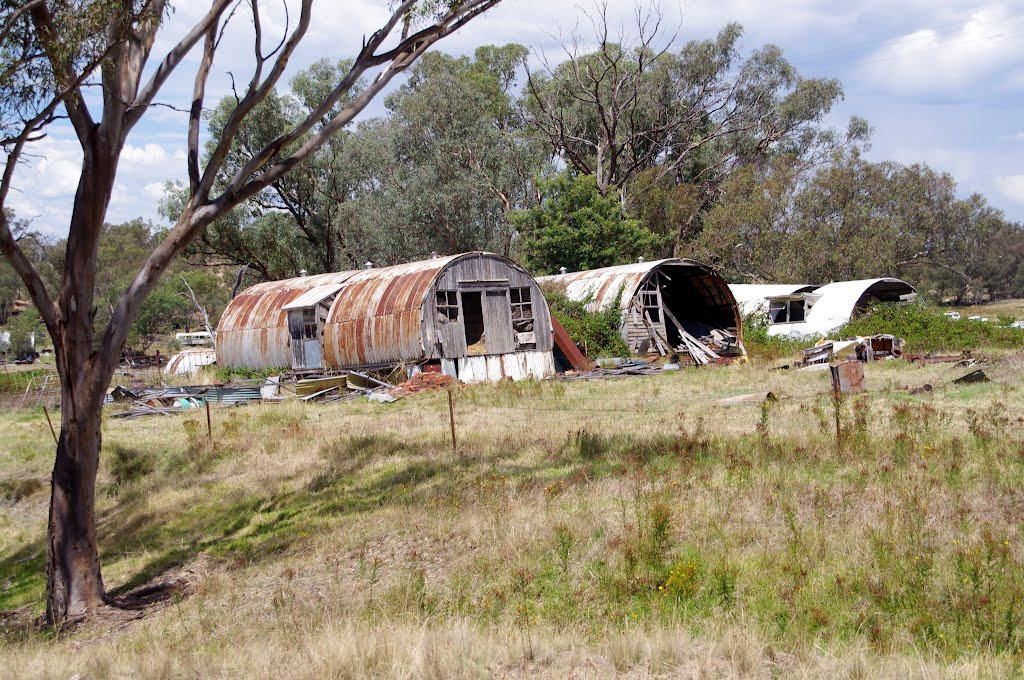 Nissen Huts covered in blackberry bushes, originally from RAAF Uranquinty: Wagga Wagga