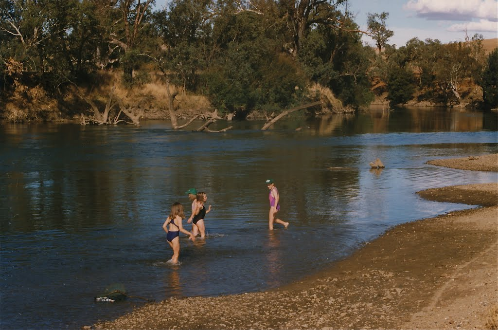 Murrumbidgee River near Wagga Wagga: Children at play