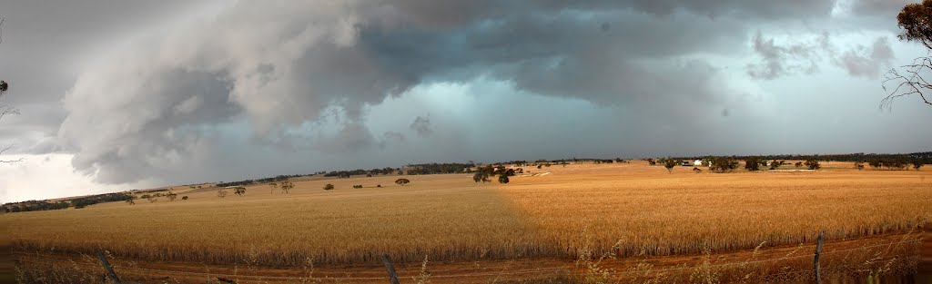 Storm approaching north of Brookton, Nov 3, 2011 3 pm