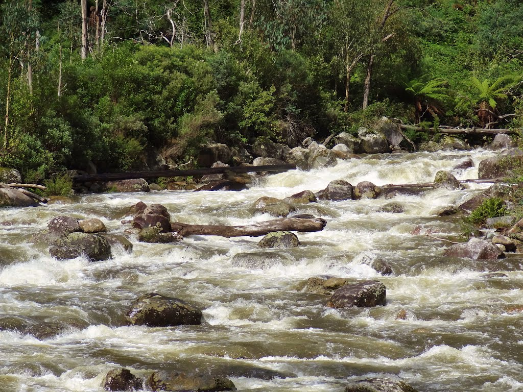 'Storm Water' Kiewa River branch