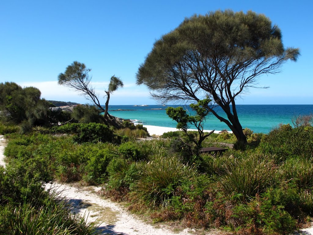 Bay of Fires,Tasmanie,