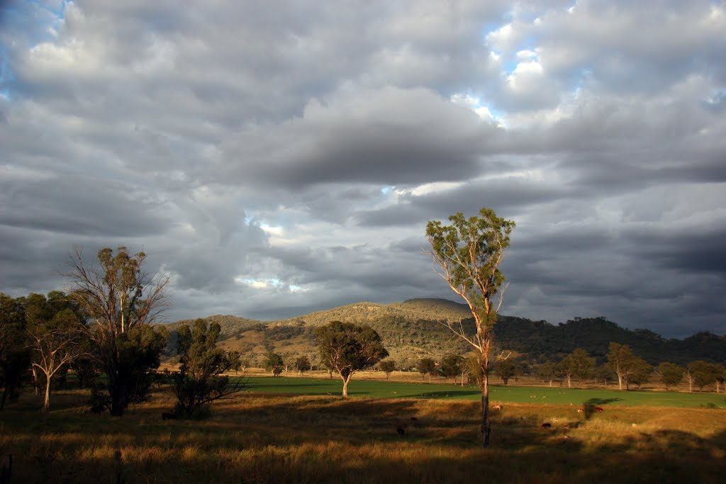 A new country day: Liverpool Plains, NSW