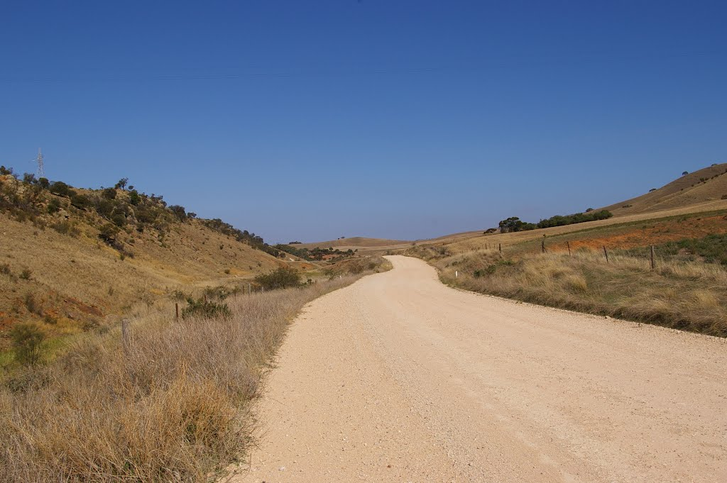 Brady Road in the Tothill Ranges