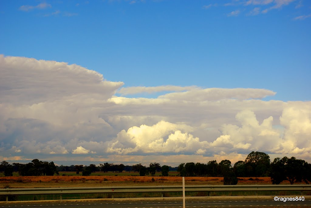 near Shepparton...skyline.