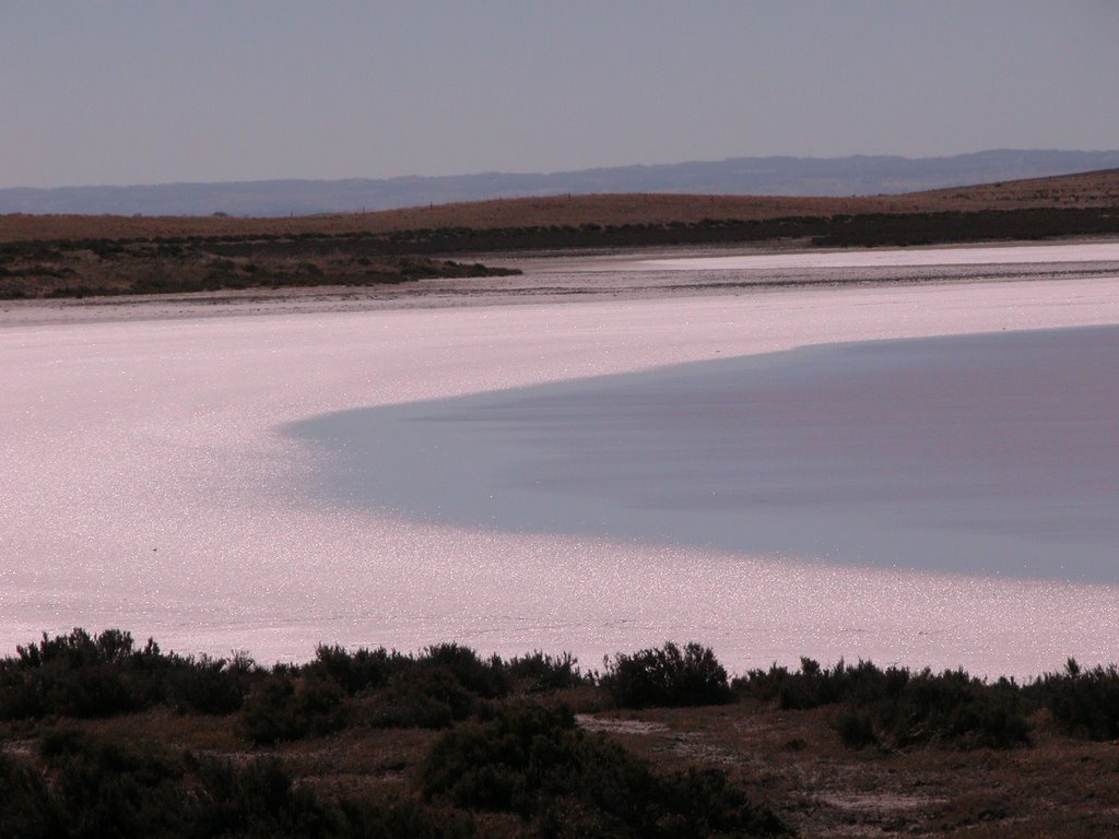 A Saline Lake at the Coorong NP