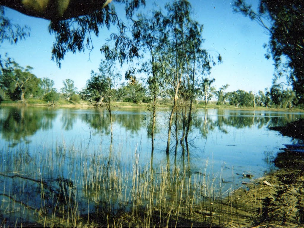 On the Murray River SA