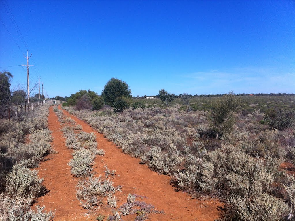 Airport  reserve Whyalla SA