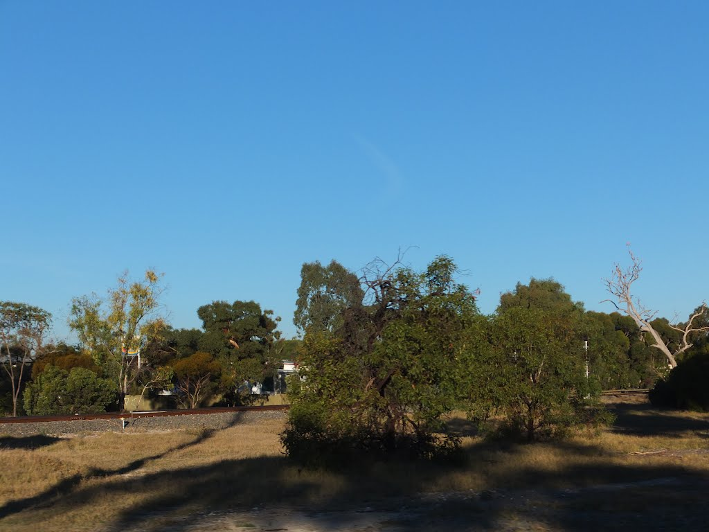 View across the Dukes Highway to the Adelaide to Melbourne Railway Line in TINTINARA, on 16-04-2012